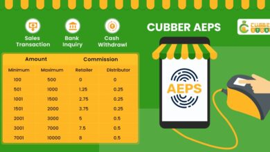 Cubber Store AePS Commission